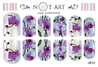 Слайдеры Nut Art Professional, Fantasy flowers nfl13 - 1