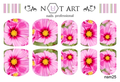Слайдеры Nut Art Professional, Sommer Mixes nsm25 - 1